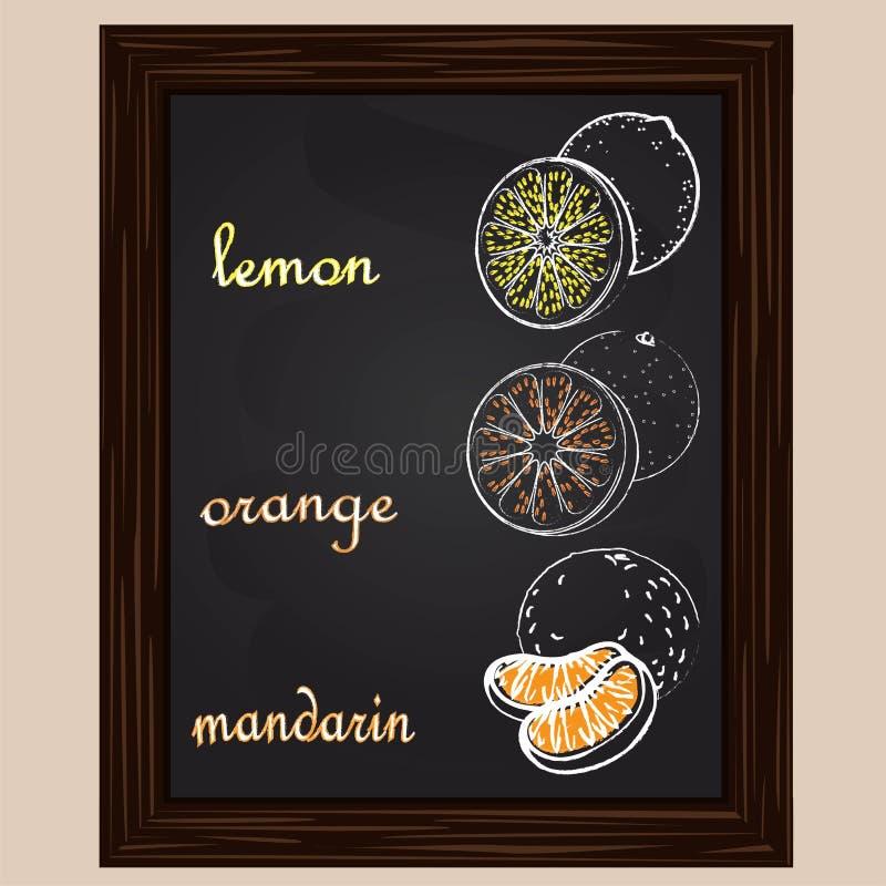 Μανταρίνι και πορτοκάλι λεμονιών που σύρονται από μια κιμωλία διανυσματική απεικόνιση