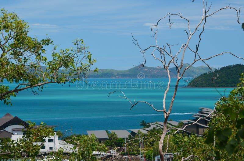 Μαρίνα νησιών του Χάμιλτον στοκ φωτογραφία με δικαίωμα ελεύθερης χρήσης