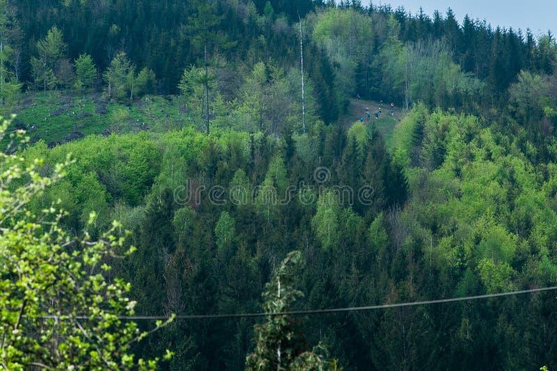 Μαραθώνιος ουρανού Perun Δρομείς στην ανάβαση στο Hill Javorovy στοκ εικόνες