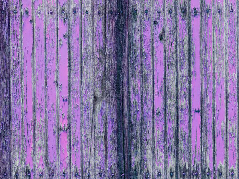 Μαραμένος ξύλινος τοίχος με το ρόδινο χρώμα αποφλοίωσης στοκ φωτογραφία