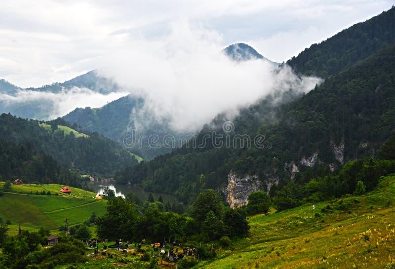 Μαργαριτάρι βουνών, λίμνη ` Zaovine `, ΑΜ Tara στοκ εικόνες