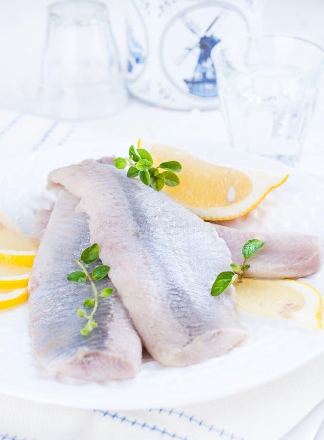 Μαριναρισμένη λωρίδα ρεγγών σε ένα άσπρο πιάτο με το λεμόνι και το κρεμμύδι Παραδοσιακή λιχουδιά άνοιξη των Κάτω Χωρών Χαρακτηρισ στοκ φωτογραφίες