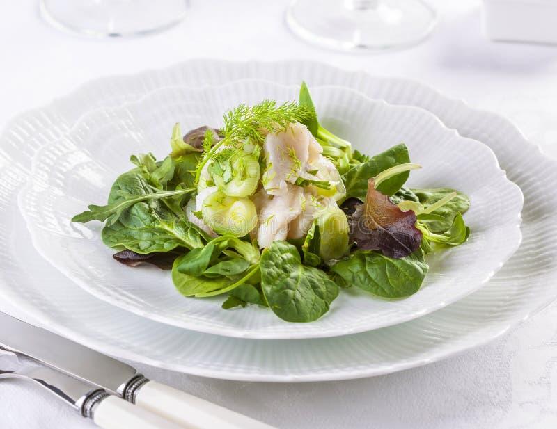 Μαριναρισμένος Ceviche χαρακτηριστικός νότος ψαριών - αμερικανικά τρόφιμα στοκ εικόνα με δικαίωμα ελεύθερης χρήσης
