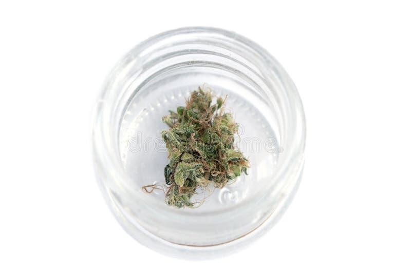 Μαριχουάνα, καννάβεις στοκ εικόνα