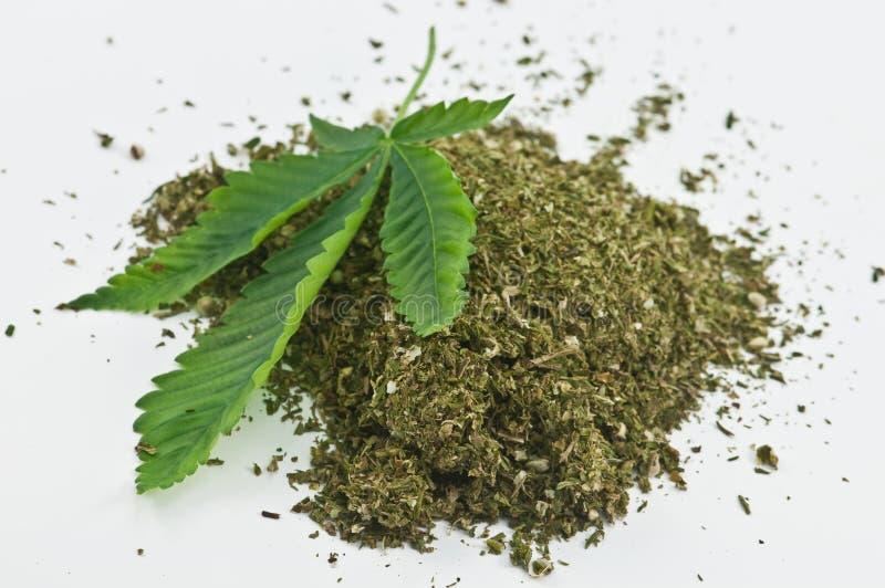 μαριχουάνα στοκ φωτογραφίες