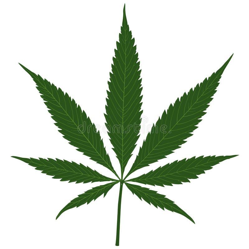 Μαριχουάνα διανυσματική απεικόνιση