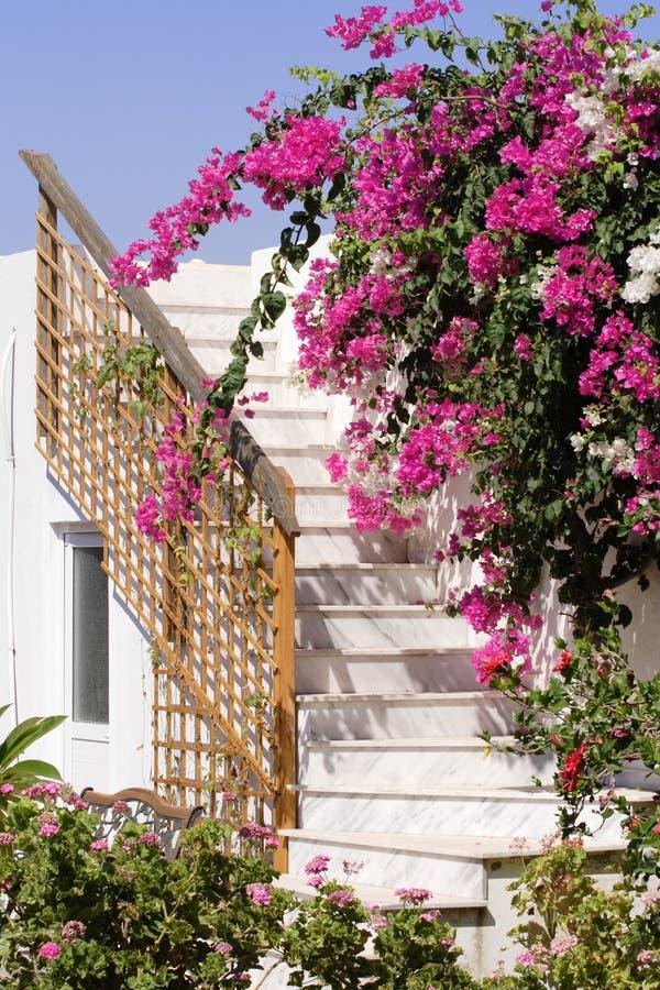 μαρμάρινη σκάλα στοκ εικόνα