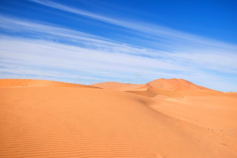 Μαροκινή έρημος, merzouga shara Να εξισώσει landsccape Τεράστιος αμμόλοφος με το τροχόσπιτο καμηλών Φυσικοί αμμόλοφοι άμμου τοπίω στοκ εικόνα