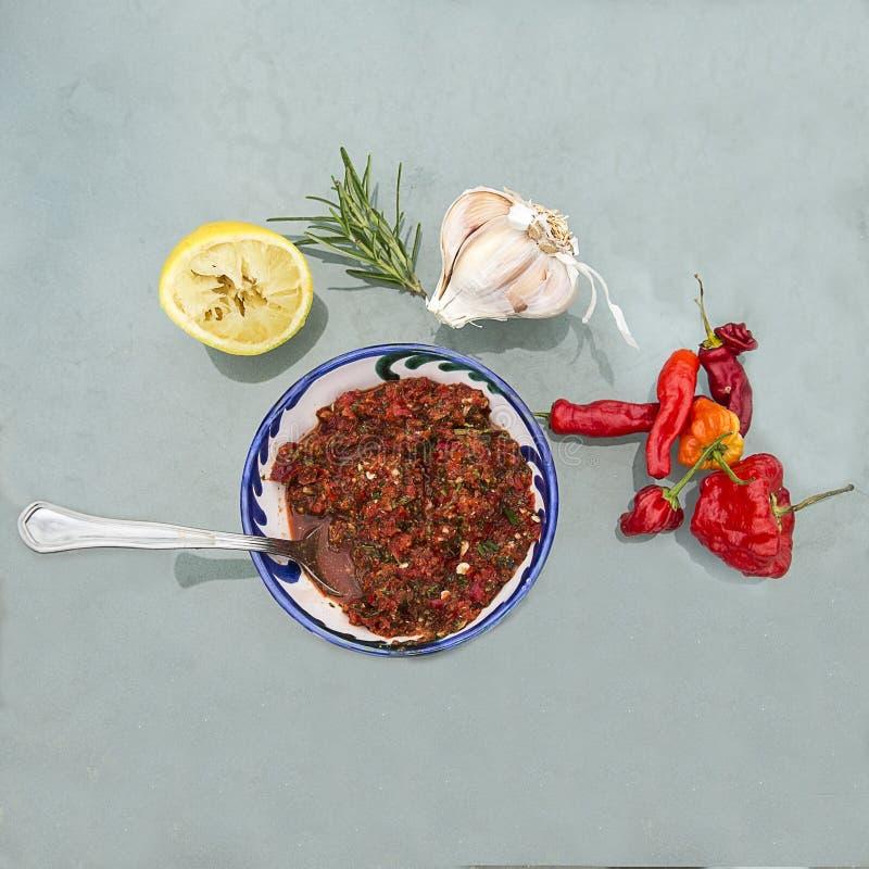 Μαροκινό salsa στοκ εικόνες με δικαίωμα ελεύθερης χρήσης