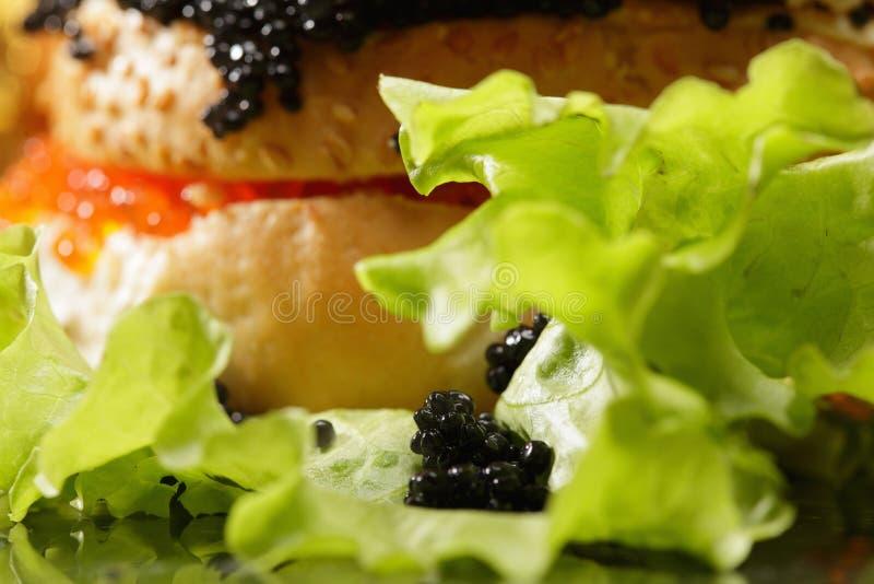 μαρούλι στοκ φωτογραφία με δικαίωμα ελεύθερης χρήσης