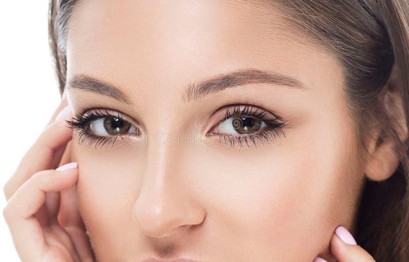 Μαστίγια ματιών φρυδιών γυναικών ματιών στοκ φωτογραφία