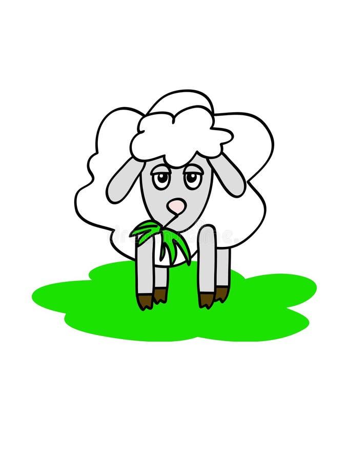 μασώντας πρόβατα απεικόνιση αποθεμάτων