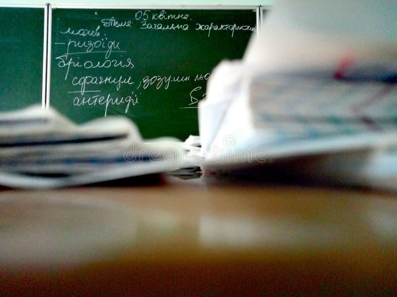 Ματιά σπουδαστή στον πίνακα στοκ φωτογραφίες με δικαίωμα ελεύθερης χρήσης