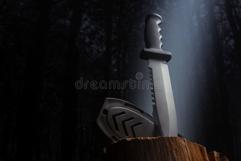 Μαχαίρι κυνηγιού στην ξύλινη άποψη γωνίας κούτσουρων στοκ φωτογραφία