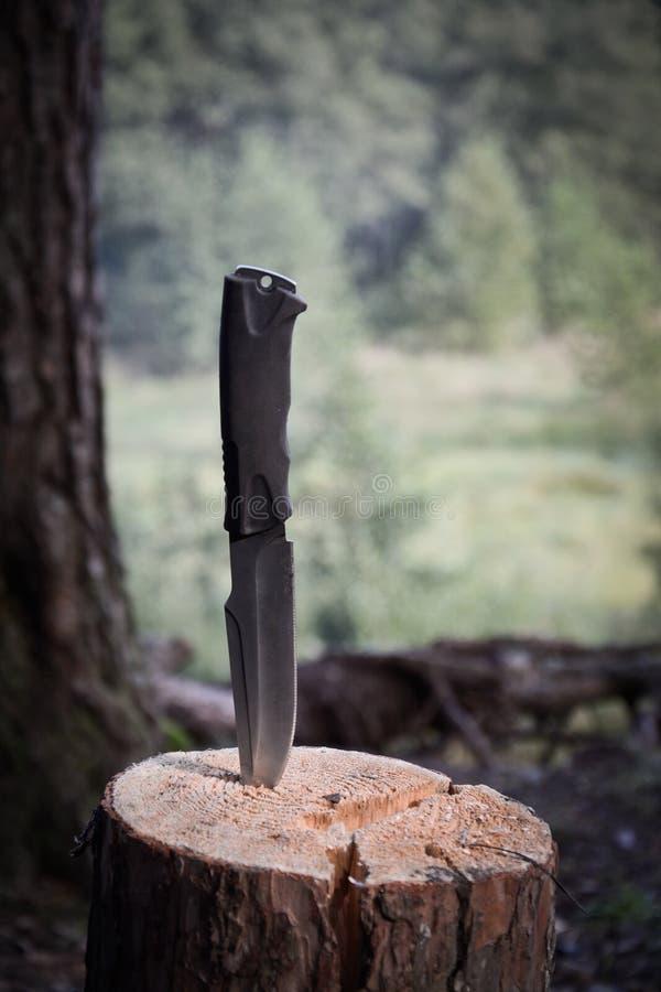 Μαχαίρι ταξιδιού στα ξύλα στοκ εικόνες με δικαίωμα ελεύθερης χρήσης