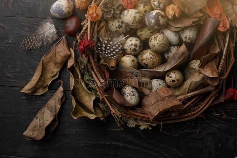 Μαύρα αυγά σε μια φωλιά των ξηρών κλάδων σε έναν μαύρο πίνακα Ύφος Πάσχας στοκ φωτογραφία με δικαίωμα ελεύθερης χρήσης