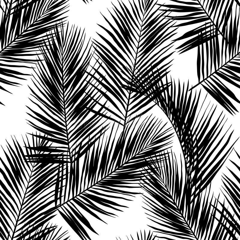 Μαύρα διανυσματικά φύλλα φοινικών που απομονώνονται στο άσπρο υπόβαθρο στοκ εικόνες