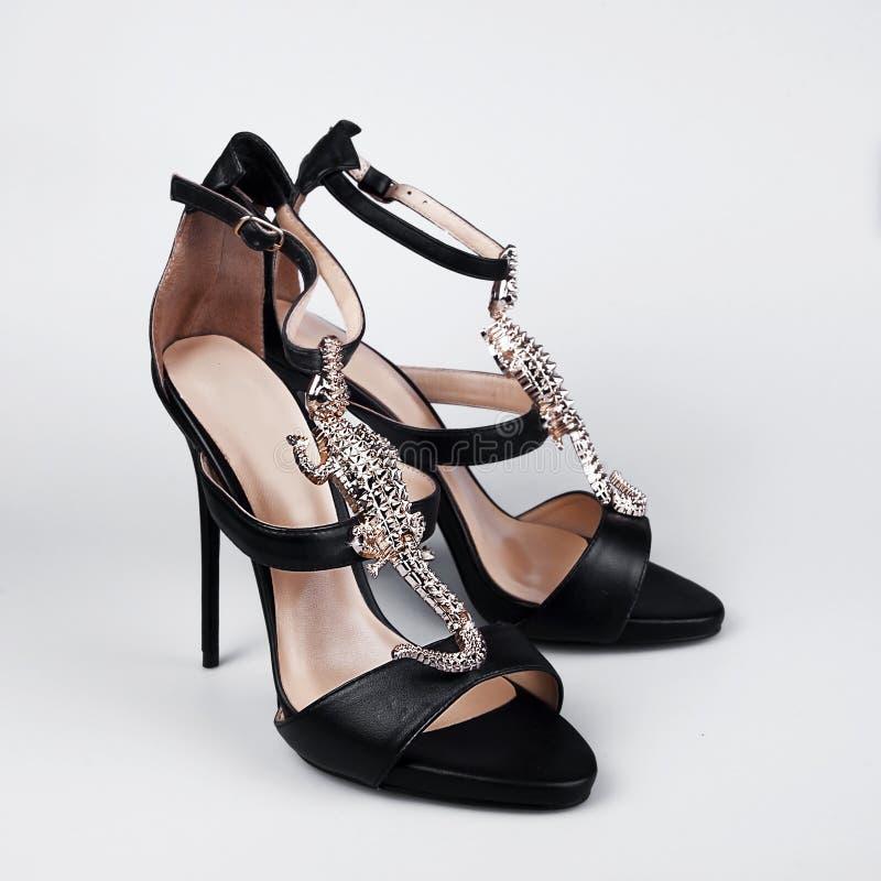 μαύρα θηλυκά παπούτσια στοκ εικόνες