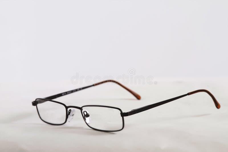 Μαύρα κέρατο γυαλιά στοκ φωτογραφία
