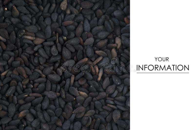 Μαύρα τρόφιμα καρυκευμάτων κύμινου μακρο στοκ φωτογραφία με δικαίωμα ελεύθερης χρήσης