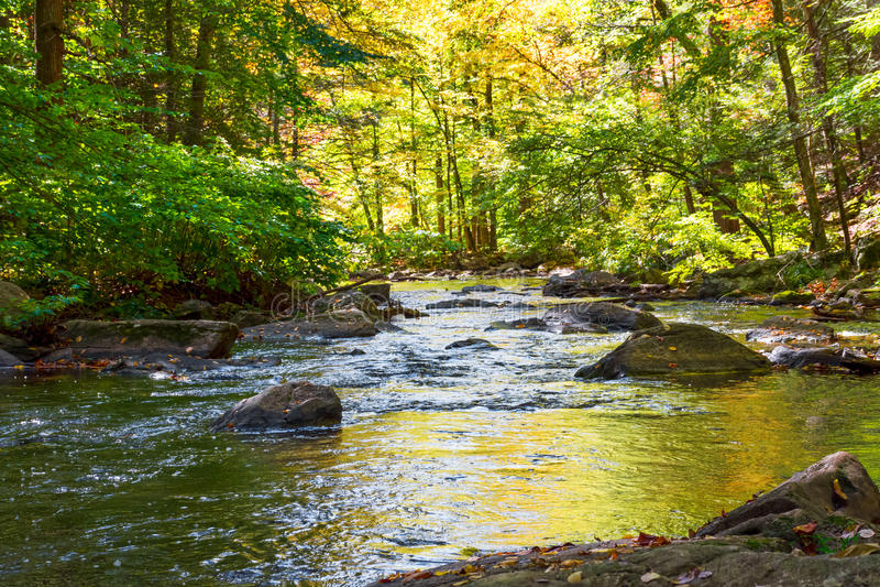 Μαύρες αντανακλάσεις ποταμών στοκ φωτογραφίες