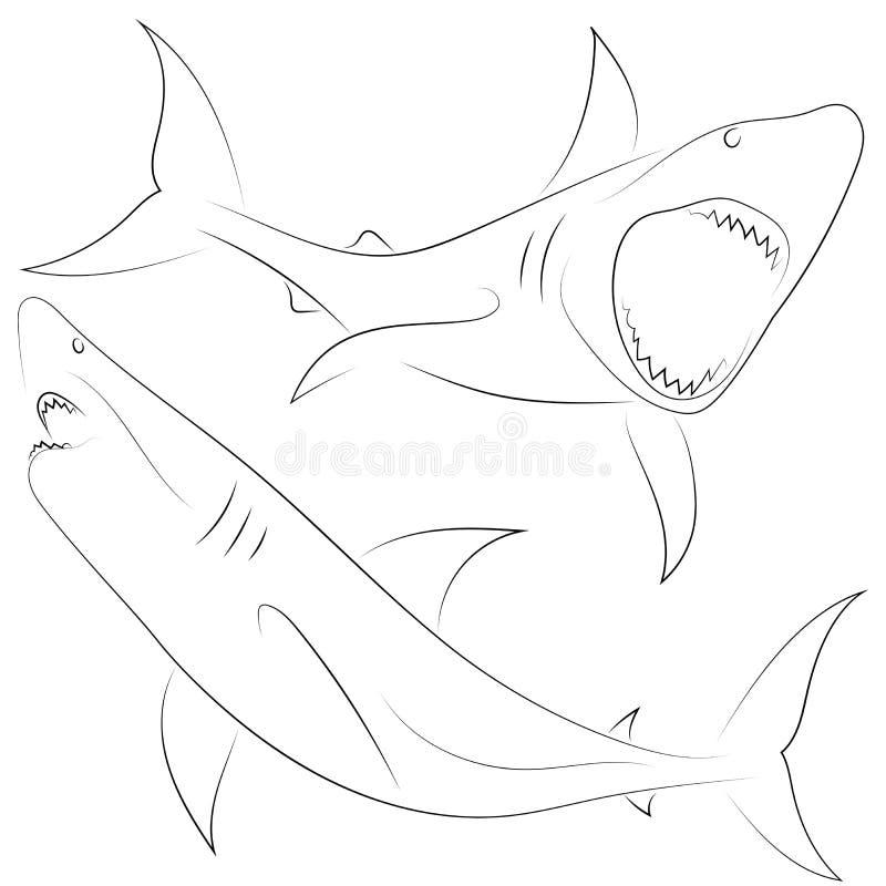 Μαύρες επιθέσεις καρχαριών γραμμών στο άσπρο υπόβαθρο καθορισμένοι καρχαρίες Ske απεικόνιση αποθεμάτων