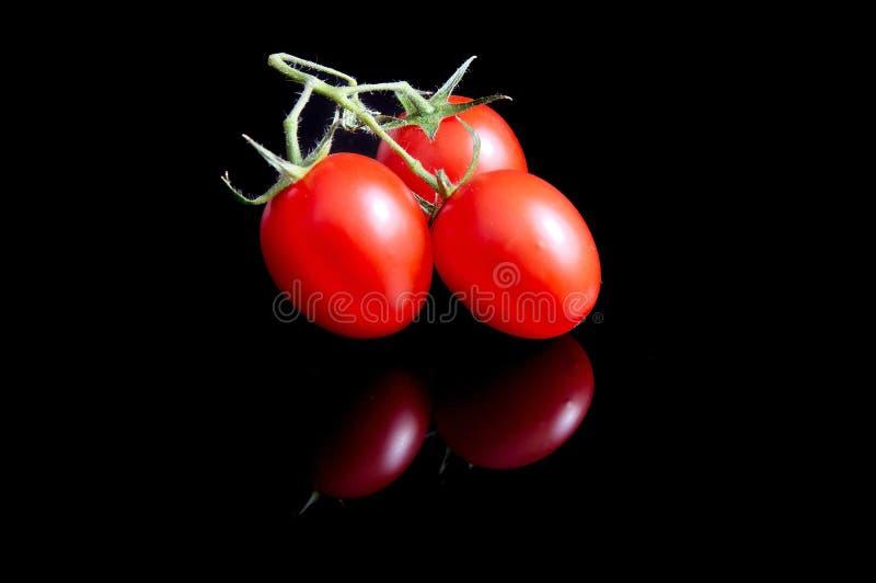μαύρες ντομάτες στοκ εικόνες