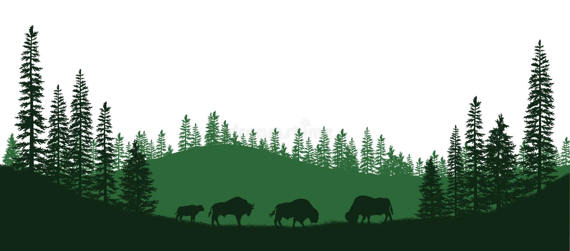 Μαύρες σκιαγραφίες του αμερικανικού βίσωνα Φυσικό πανόραμα των δασικών ζώων Απομονωμένο τοπίο Σκηνή άγριας φύσης διανυσματική απεικόνιση