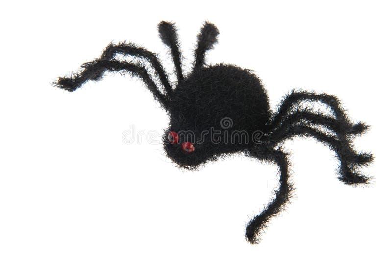 μαύρη αράχνη στοκ εικόνα με δικαίωμα ελεύθερης χρήσης