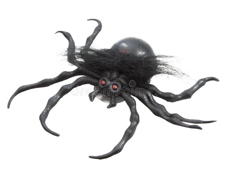 Μαύρη λαστιχένια αράχνη στοκ εικόνες