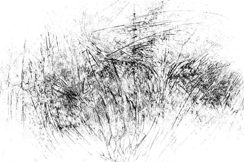 Μαύρη γρατσουνισμένη σύσταση σε ένα άσπρο υπόβαθρο στοκ φωτογραφία