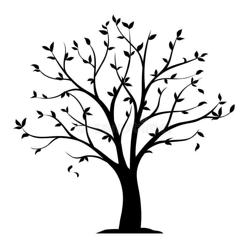 Μαύρη διανυσματική σκιαγραφία ενός δέντρου με τα φύλλα που απομονώνονται στο λευκό απεικόνιση αποθεμάτων