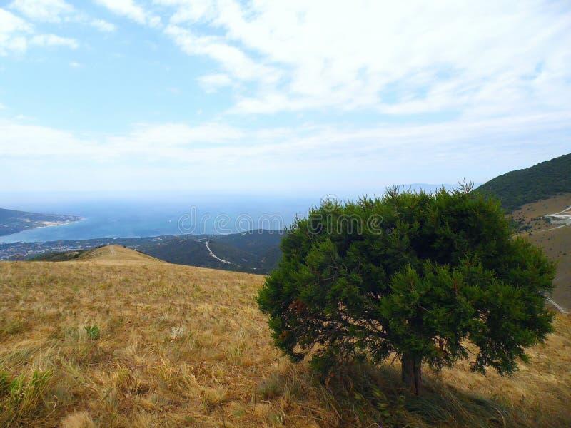 Μαύρη Θάλασσα, άποψη από το βουνό στοκ εικόνα