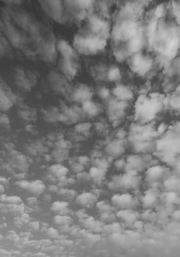 Μαύρη κάθετη άποψη των σύννεφων σωρειτών στοκ φωτογραφία