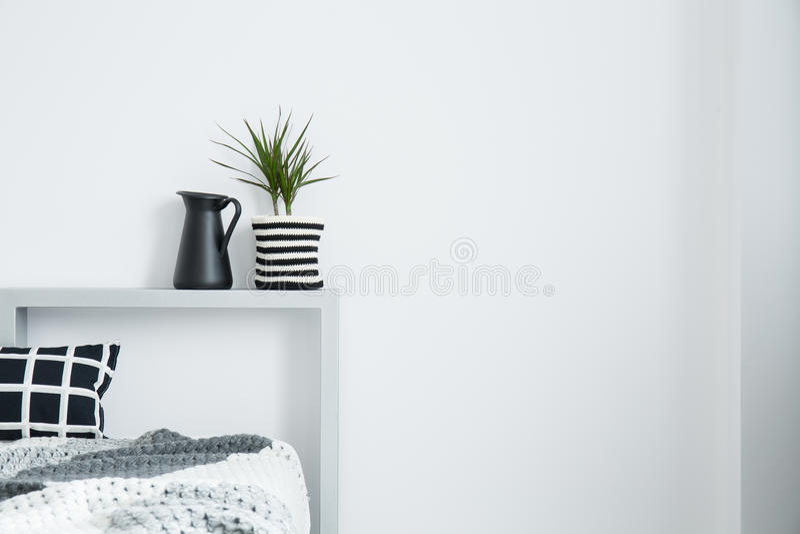Μαύρη κανάτα γάλακτος δίπλα στις εγκαταστάσεις στοκ εικόνα με δικαίωμα ελεύθερης χρήσης