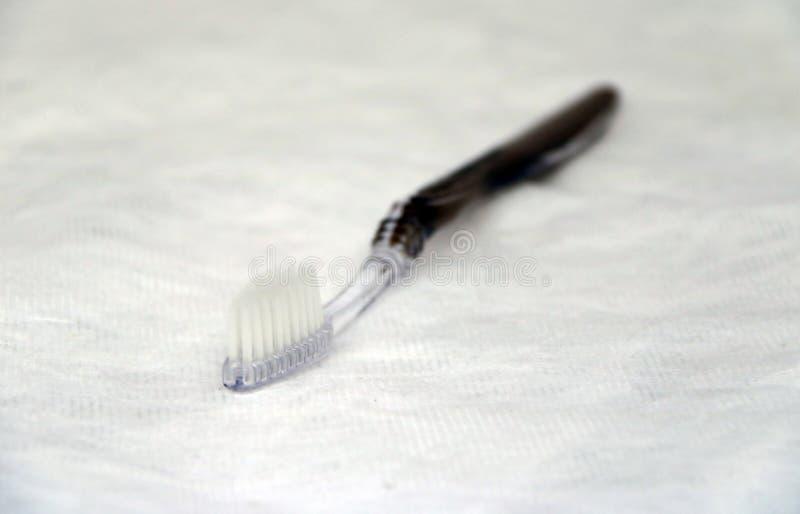 Μαύρη λαβή οδοντοβουρτσών στο άσπρο υπόβαθρο στοκ φωτογραφίες με δικαίωμα ελεύθερης χρήσης
