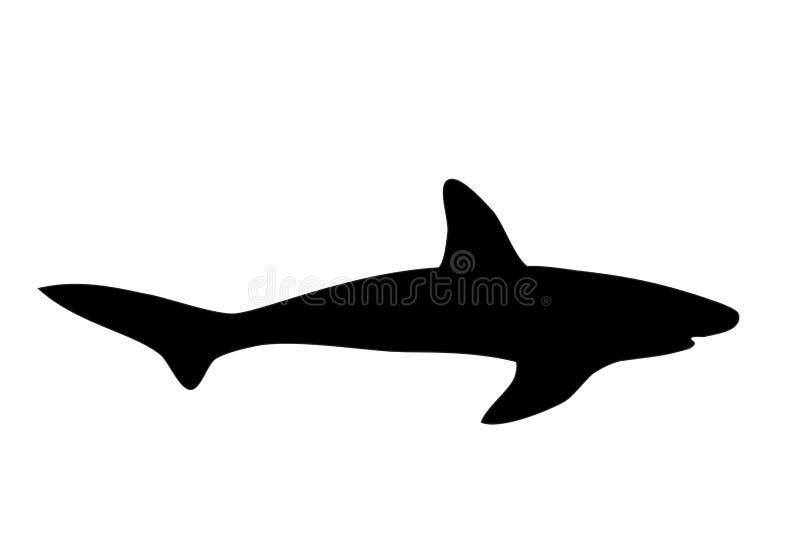 Μαύρη σκιαγραφία καρχαριών άσπρο, διανυσματικό eps 10 διανυσματική απεικόνιση