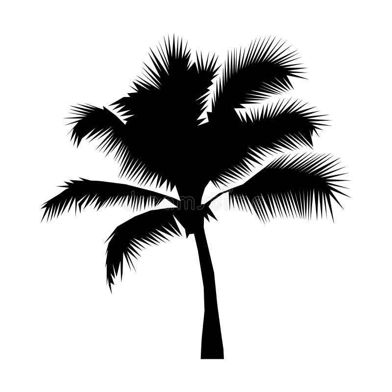 Μαύρη σκιαγραφία φοινίκων καρύδων που απομονώνεται σε μια άσπρη απεικόνιση υποβάθρου Εικονίδιο, σημάδι Σχέδιο λογότυπων τέχνης διανυσματική απεικόνιση