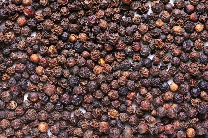 Μαύρη σύσταση πιπεριών στοκ εικόνα