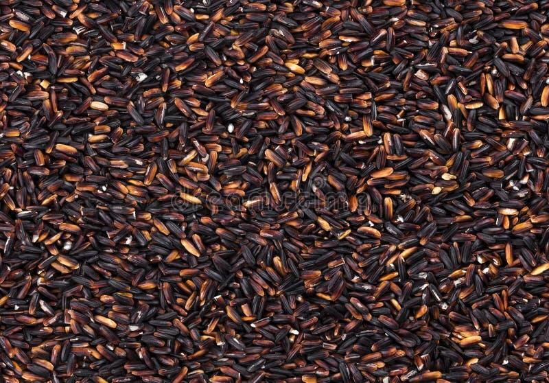 Μαύρη σύσταση ρυζιού στοκ φωτογραφίες με δικαίωμα ελεύθερης χρήσης