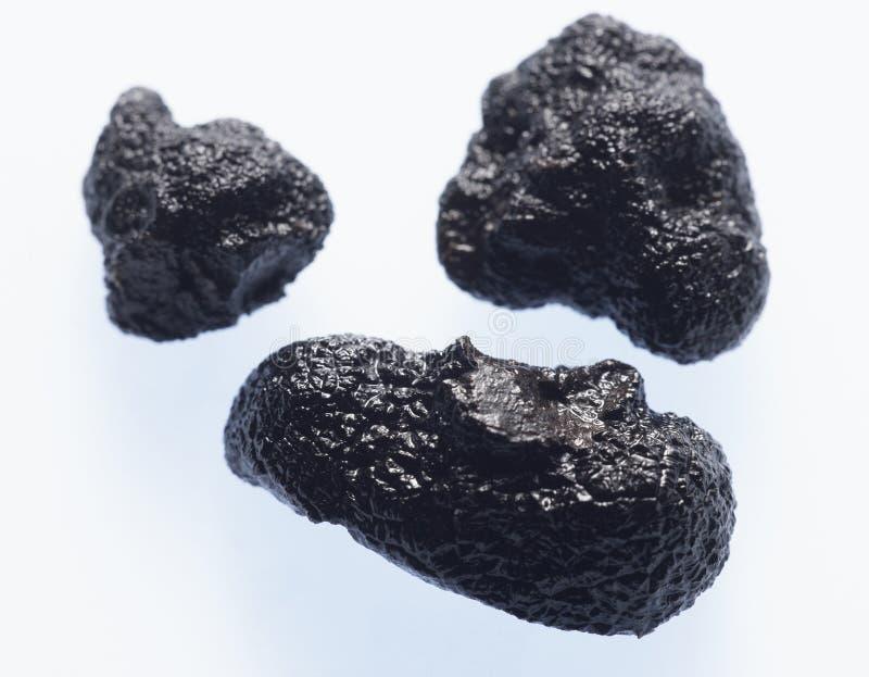 μαύρη τρούφα στοκ εικόνα