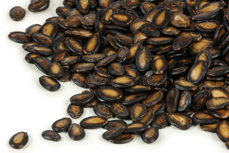 Download μαύροι σπόροι πεπονιών στοκ εικόνα. εικόνα από κινεζικά - 13186027