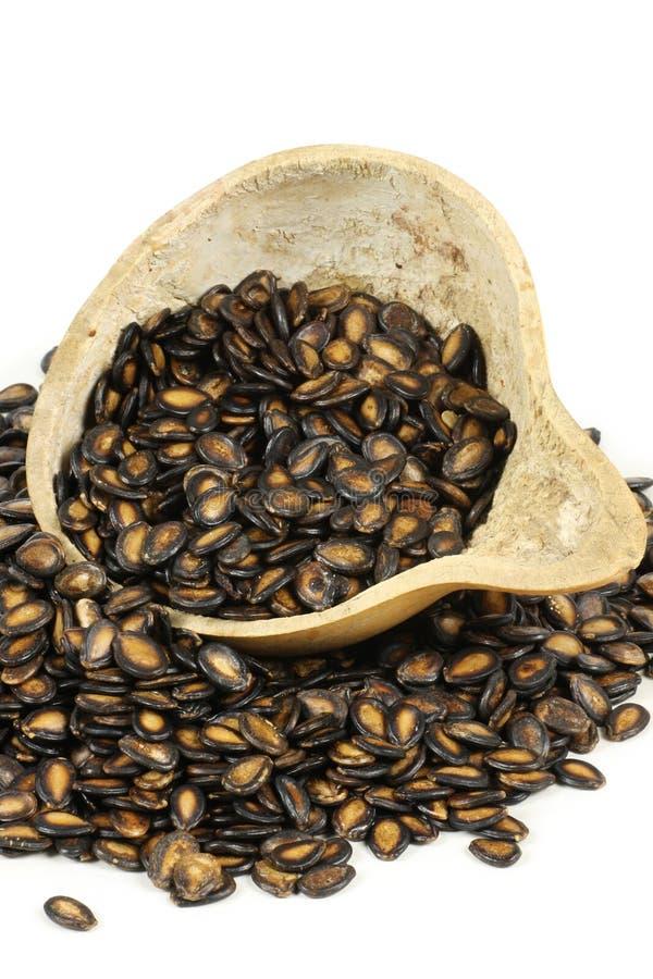 Download μαύροι σπόροι πεπονιών στοκ εικόνες. εικόνα από ξηρός - 13186076