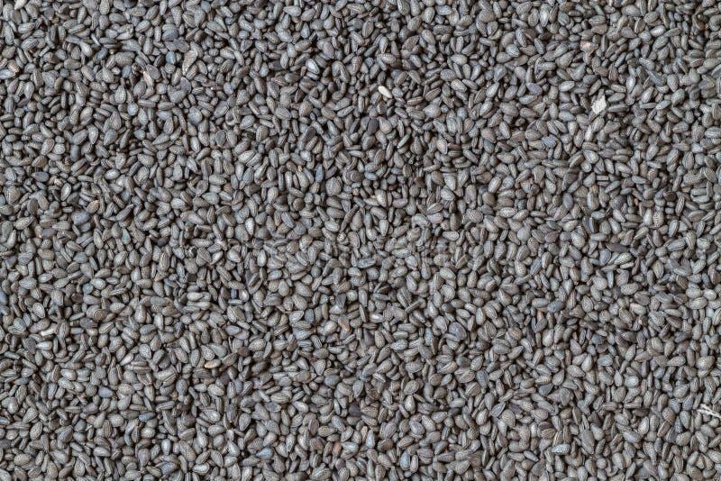 Μαύρος σπόρος σουσαμιού για το υπόβαθρο στοκ εικόνα