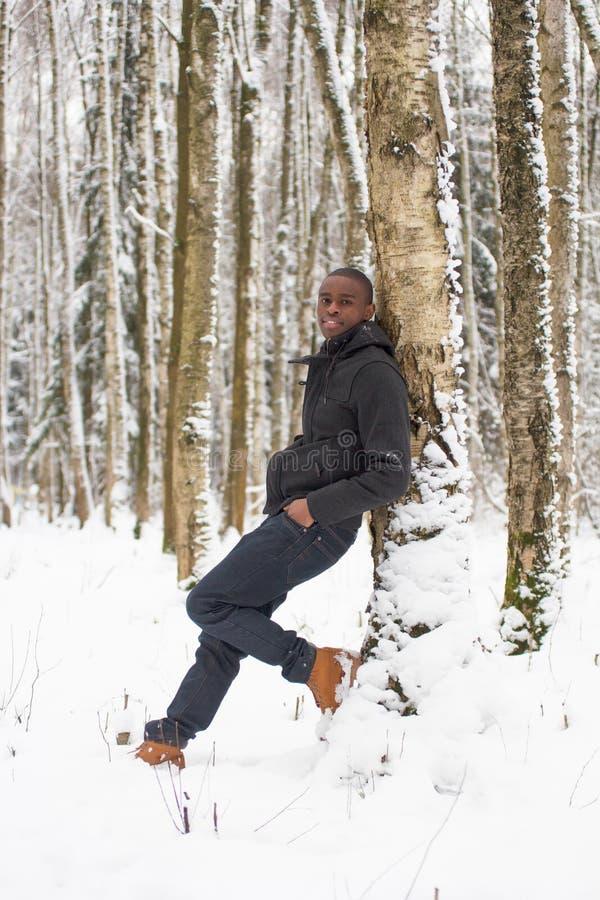 Μαύρος στο χιόνι ενάντια σε ένα δέντρο στοκ εικόνα με δικαίωμα ελεύθερης χρήσης