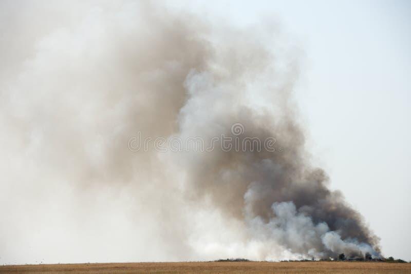 Μαύρος τοξικός καπνός στοκ φωτογραφίες με δικαίωμα ελεύθερης χρήσης