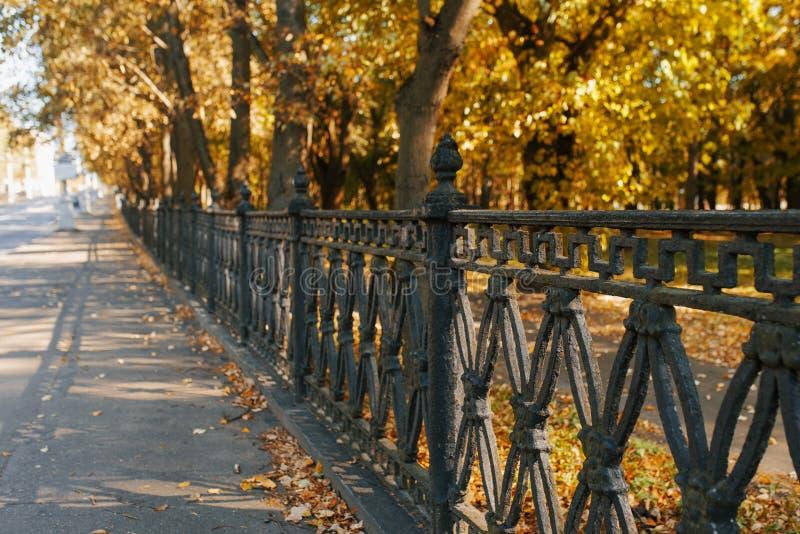 Μαύρος φράχτης του Πάρκου της πόλης και φθινοπωρινά δέντρα στοκ φωτογραφία με δικαίωμα ελεύθερης χρήσης