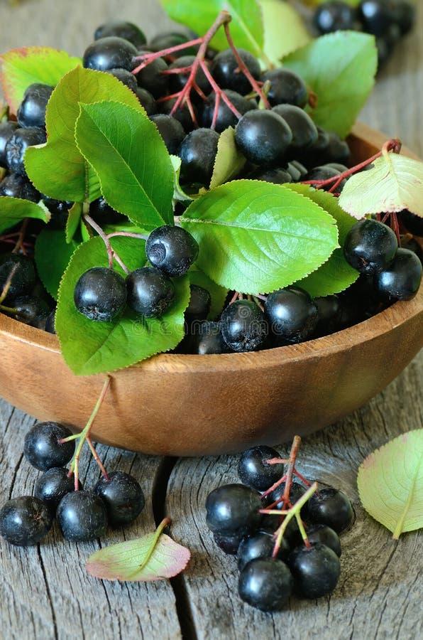 Μαύρος chokeberry στον ξύλινο πίνακα στοκ εικόνα