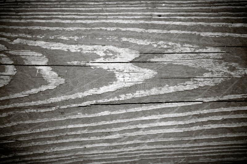 μαύρο άσπρο woodgrain σύστασης στοκ φωτογραφίες