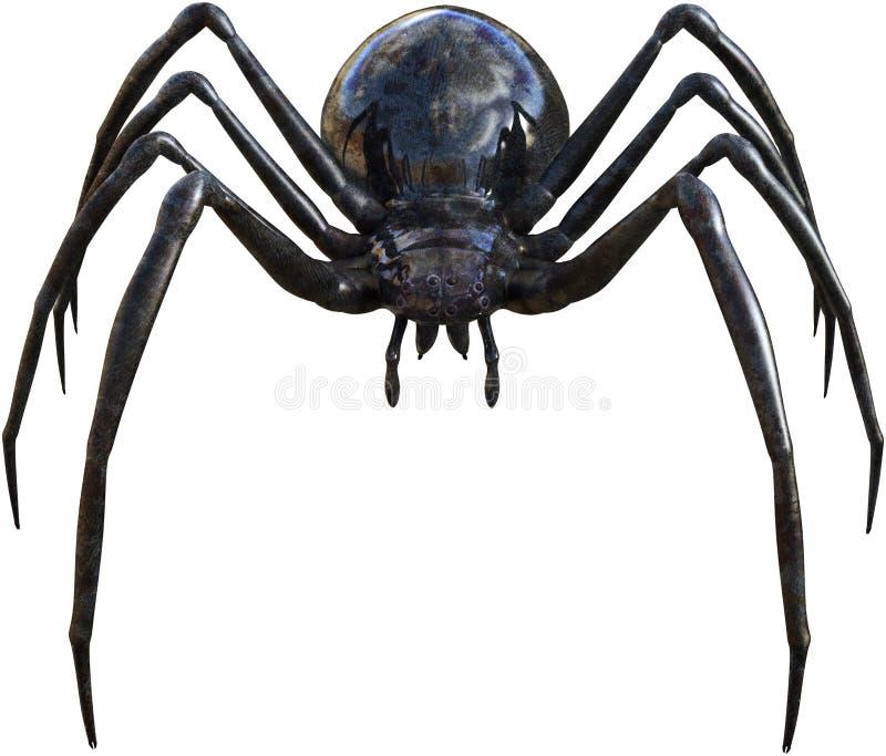 Μαύρο έντομο αραχνών χηρών που απομονώνεται ελεύθερη απεικόνιση δικαιώματος